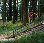 BOOM... Alec Majerus on adidas Skateboarding team!
