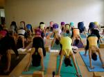 Yoga Teacher Training Alliance