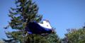 Wingsuit Human Flight Progression