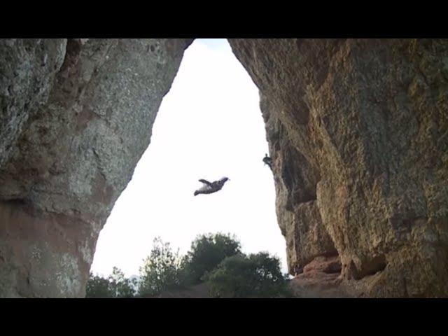Crazy Wingsuit jump