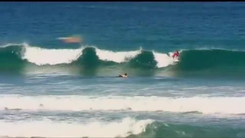 Whale Knocks Surfer Unconscious in Australia