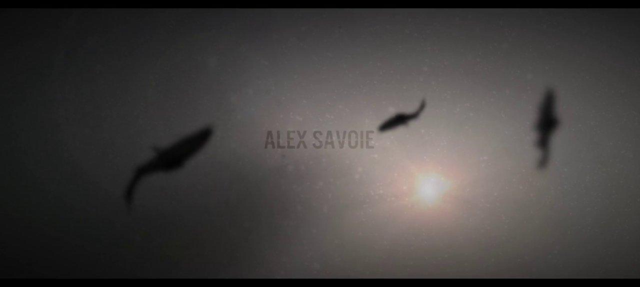 Alex Savoie 2013