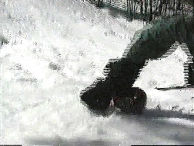 Matt doing a Backflip to Face Spring on Skiboards