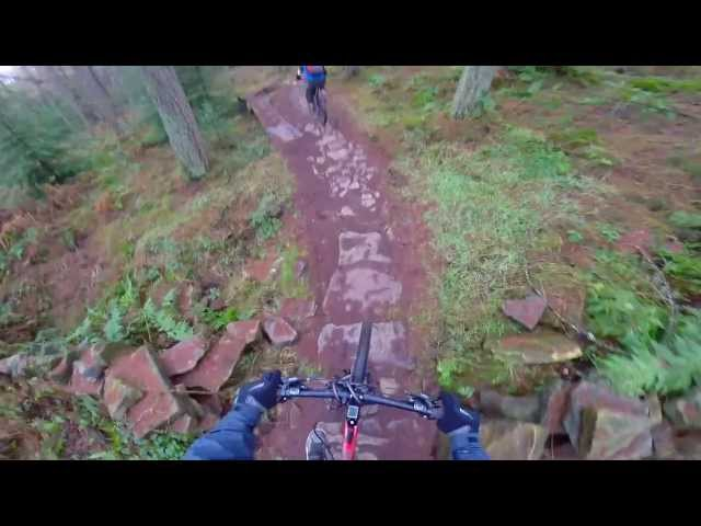 Hamsterley Forest Mountain Biking - Black Route