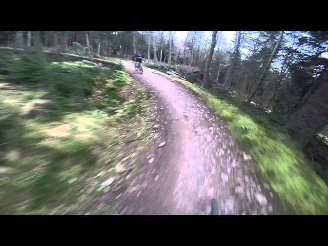 Spooky Wood Descent, Glentress Scotland