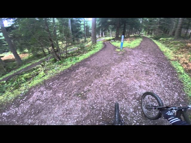 Glentress 7stanes Mountain Biking Trails Best Bits