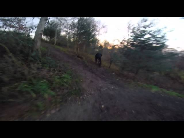 Gopro Head Mount Vs Chest Mount at local Trails