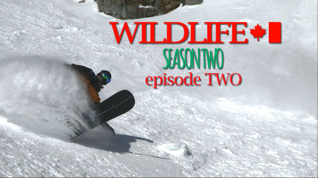 NUULIFE PRESENTS WILDLIFE SEASON 2 – EPISODE 2