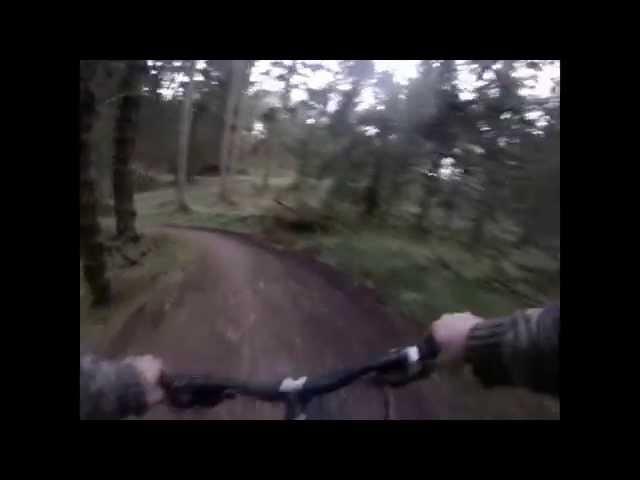 Ae Forest Scotland MTB GoPro