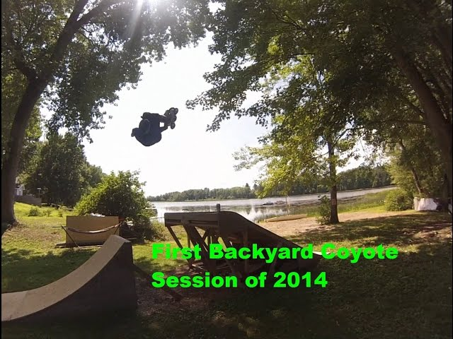 Backyard Coyote Session #1 2014