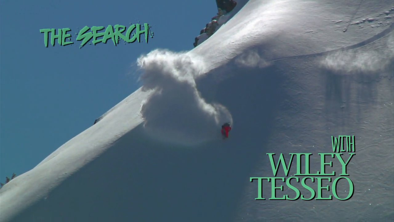 The Search with Wiley Tesseo