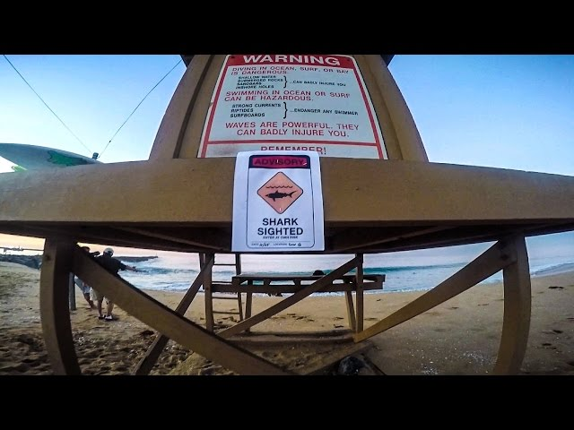 The Wedge Bodyboarding POV | High Tide | 2015
