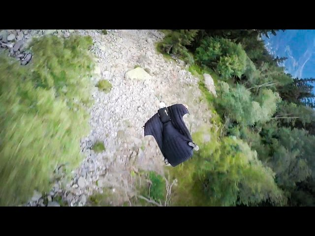 Insane Wingsuit Flight Through Forest