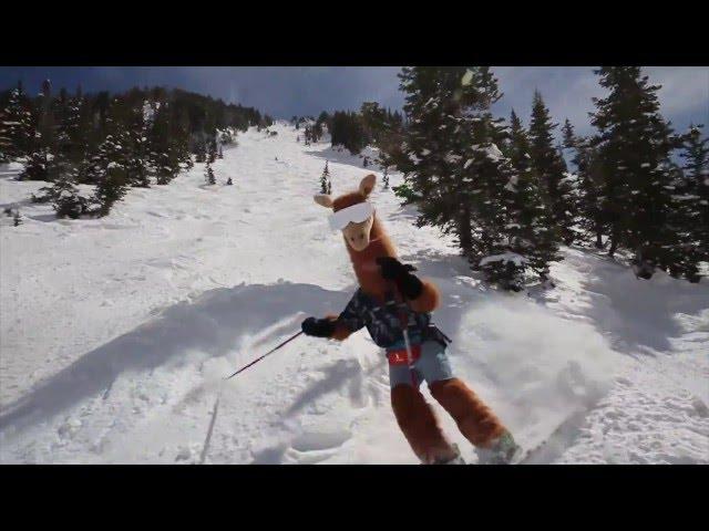 Cotopaxi Llama Shreds!
