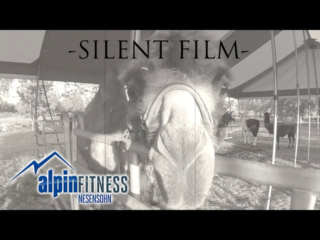 -SILENT FILM- by Mathias Alpinfitness Nesensohn