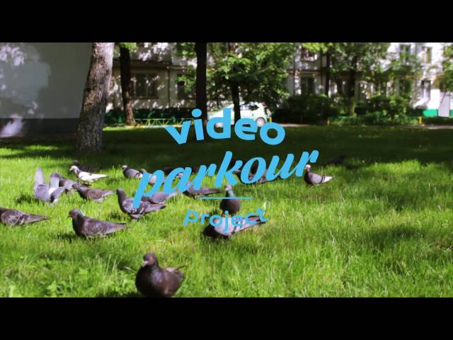 video parkour project - we are