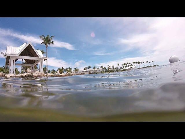 GoPro: Marathon Key Snorkeling