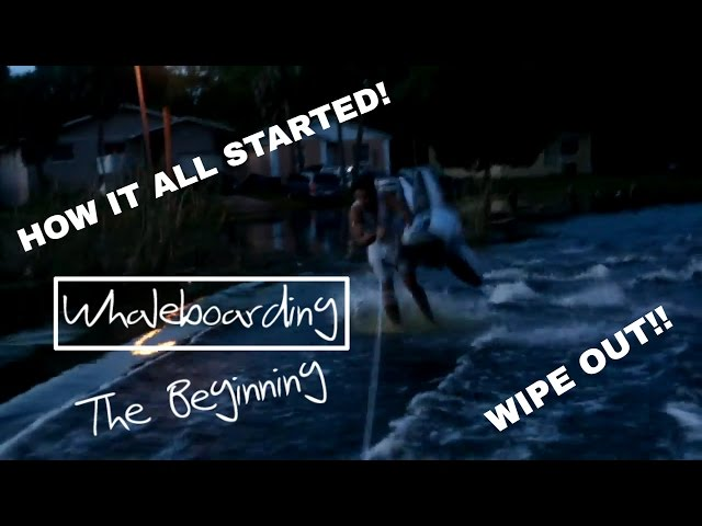 THE BEGINNING WHALEBOARDING!!