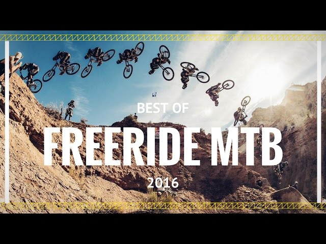 Best of Freeride Mountain Biking 2016