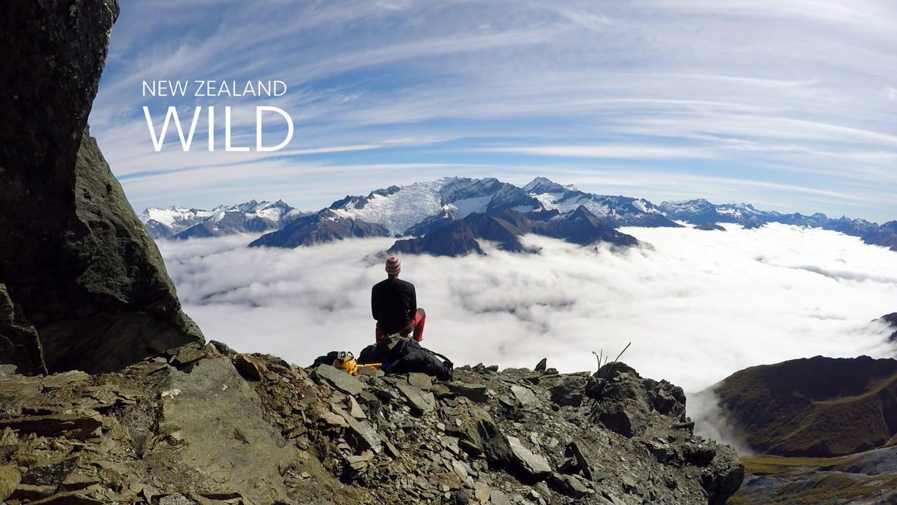 David Walden : New Zealand Wild