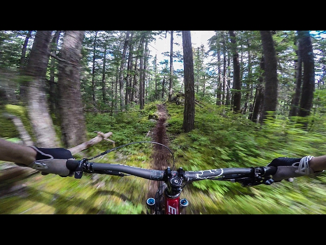 Steve Storey Wins Pinkbike GoPro Of The World