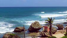 Junior Pro Evan Brownell Surfing Barbados