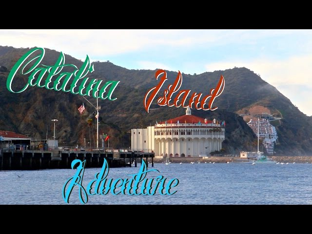 Catalina Island Adventure
