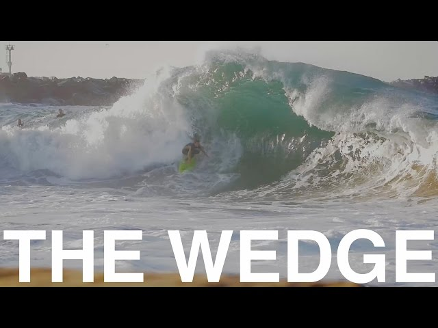 THE WEDGE TURNS ON - SPRING 2017