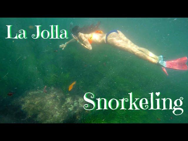 La Jolla Snorkeling