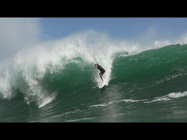 The Wedge: Let The Crazyness Begin.