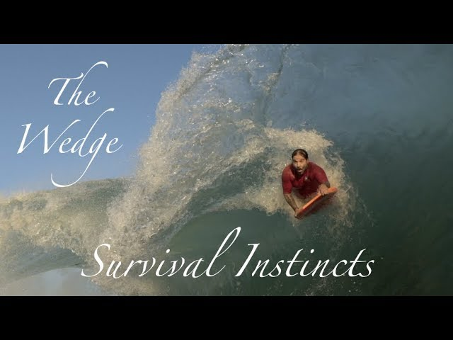 The Wedge | Survival Instincts | Big July