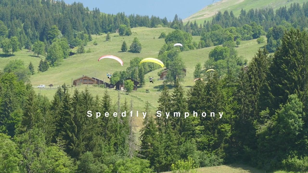 Speedfly Symphony #Paraspeed #Speedflying
