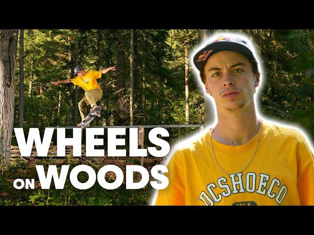 Red Bull Wheels On Wood