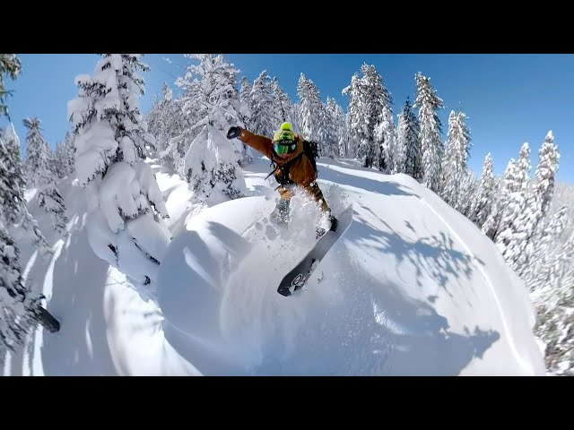 Tim Humphreys 2019 Season Edit