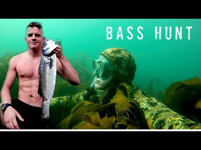 Amazing Spearfishing Video