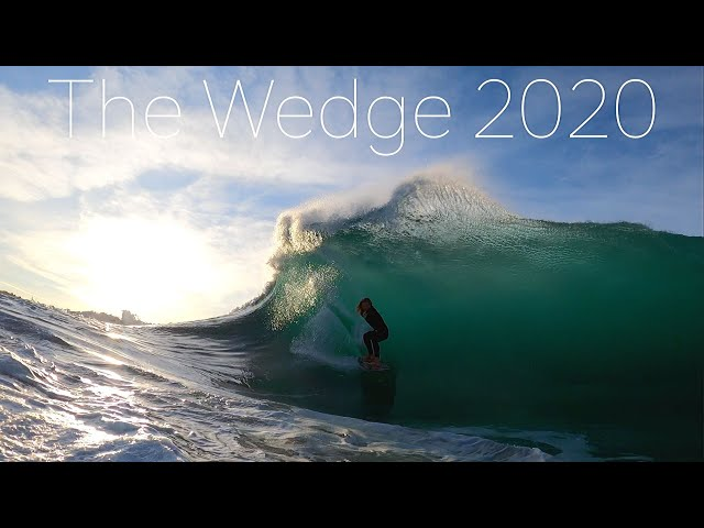 THE WEDGE | SURPRISE she is ALIVE | 2020 | First s