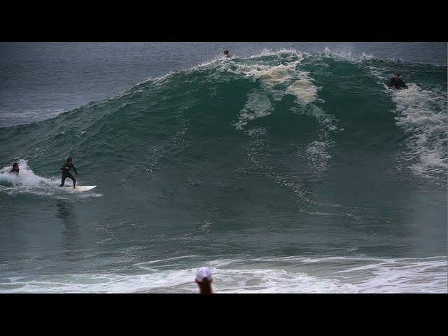 The Wedge | BIG BARRELS and BAD VIBES | TRUE WEDGE