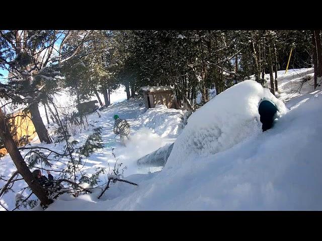 Backyard Railing